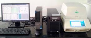 Equipo de amplificación y cuantificación en tiempo real, termociclador ¨CFX96 Touch Real-Time PCR detection systems¨ BIO-RAD® (Derecha), empleado para la cuantificación de las bacterias causantes del raquitismo y la escaldadura de la hoja.